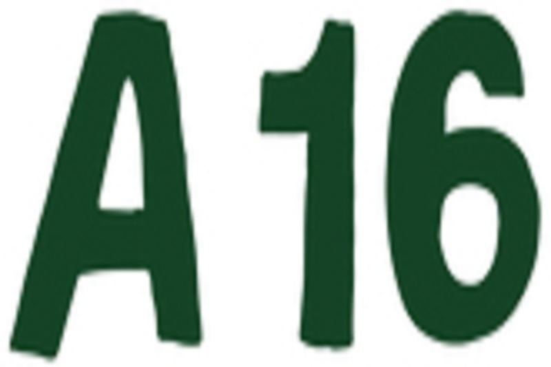 Pizzeria: A16