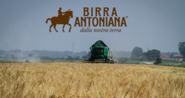 Birra Antoniana presenta Marechiaro, approvata dall'AVPN